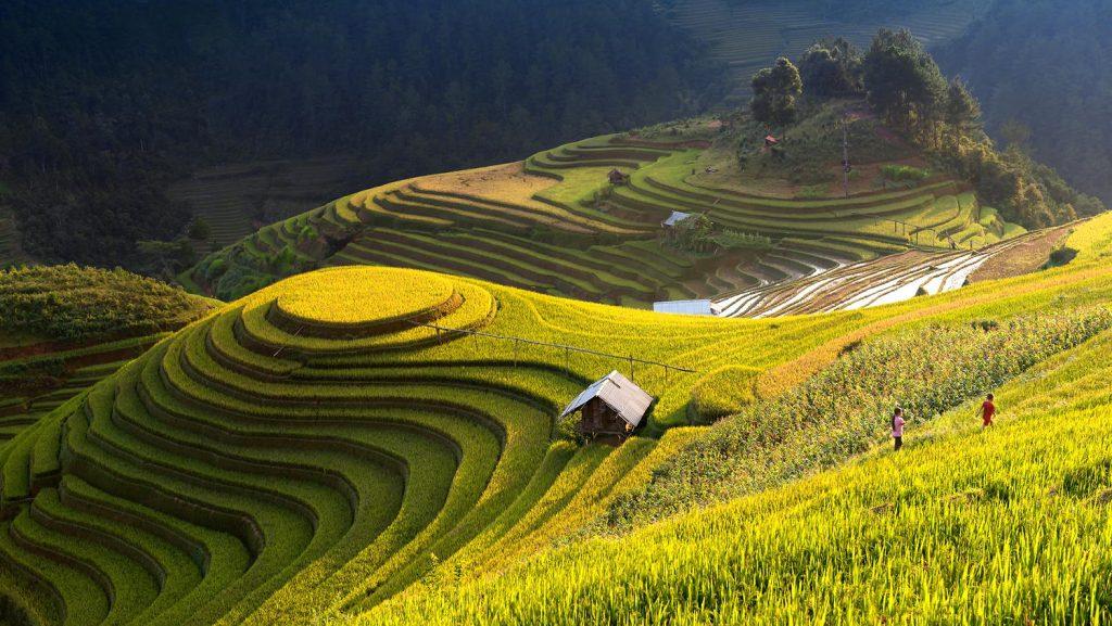 Sapa og  Homestay i Vietnam