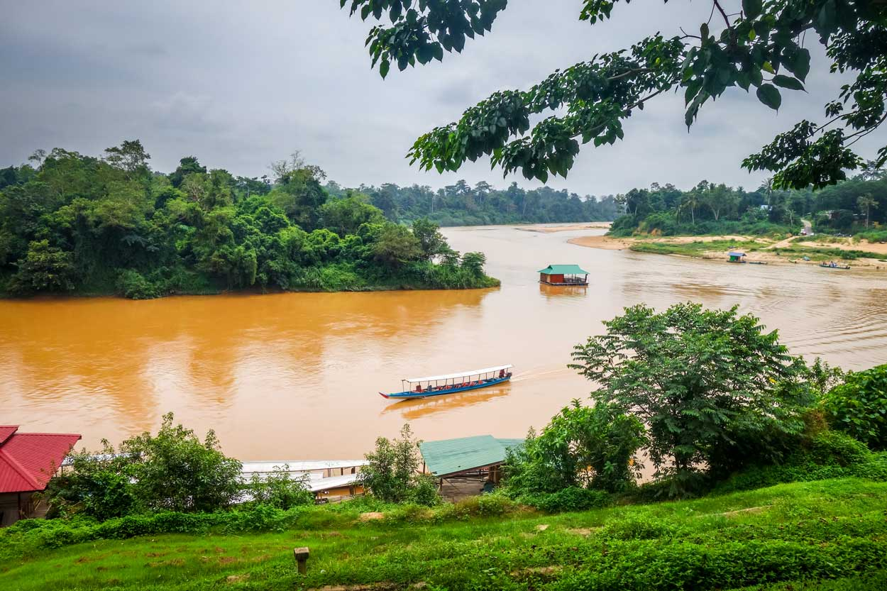 Taman Negara Nationalpark - Malaysia